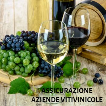assicurazione per aziende vitivinicole