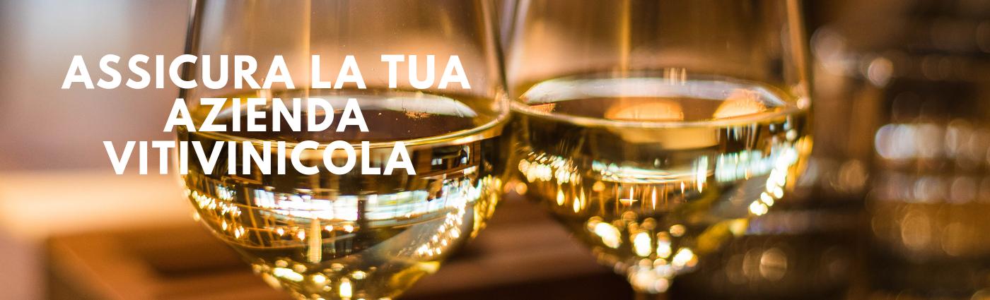 assicurazione_azienda_vitivinicola
